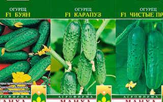 Что означает маркировка F1 на семенах – гибриды и их недостатки