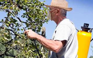 Защита сада и огорода химическими средствами
