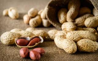 Растение арахис: выращивание в открытом грунте, фото, как вырастить в Украине и России, посадка