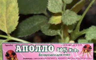 Инсектицид Аполло: инструкция по применению, отзывы о препарате