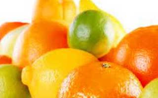 Размножение цитрусовых растений, обрезка и пересадка