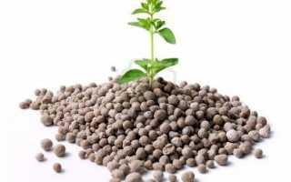 Азотные удобрения: применение и использование, свойства, каким растениям нужен азот