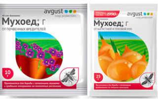 Мухоед: инструкция по применению, отзывы, хранение препарата