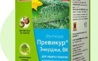 Инструкции по применению фунгицидов на растениях от болезней