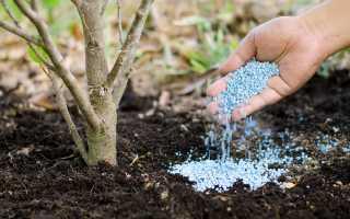 Минеральные удобрения: виды, способы внесения и применения удобрений