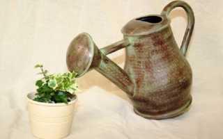 Вода для полива растений: полезная и вредная вода для цветов