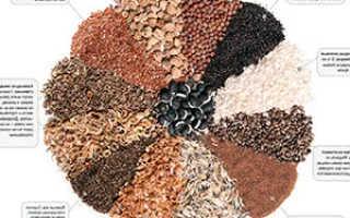 Правила сбора семян: когда собирать, как выбрать плод на семенник