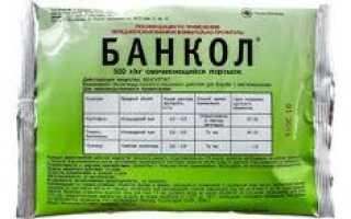 Инсектицид Банкол: инструкция по применению препарата, хранение, совместимость